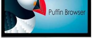 Puffin Web Browser для компьютера – как скачать, обзор браузера