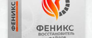 """Восстановление удаленных данных в программе """"ФЕНИКС"""""""