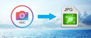 Чем открыть файлы формата HEIC на ОС Windows 10 – программы и веб-сервисы