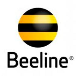 Все способы узнать свой Beeline-номер