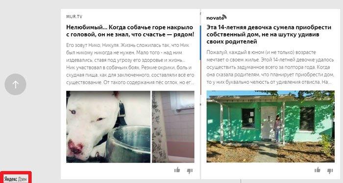 Блоки Yandex Zen