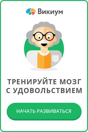 Wikium - Тренировка мозга