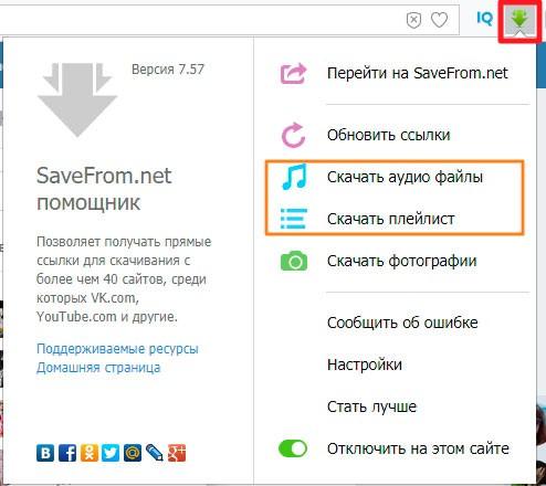 Дополнительные опции плагина SaveFrom.net