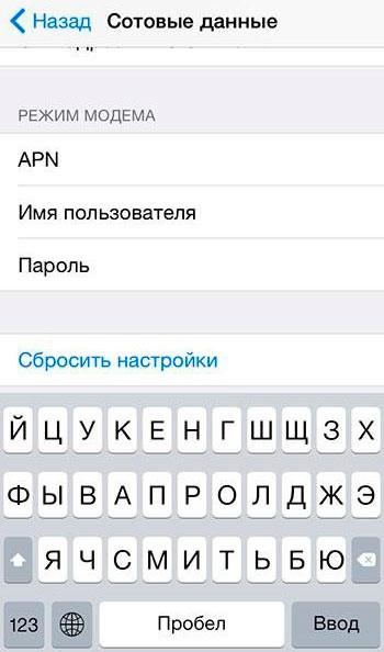 Указываем параметры точки доступа iPhone