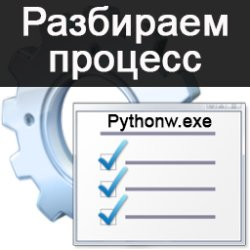 """""""Pythonw.exe"""" что за процесс и как с ним бороться?"""