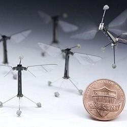 Учёным удалось создать летающего робота