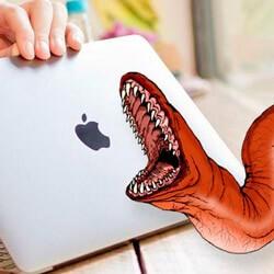 Пользователям Mac необходим антивирус