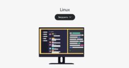 Как загрузить и установить Discord на операционку Linux, его настройка