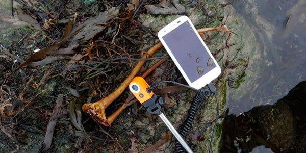Ай Ай подключена к смартфону