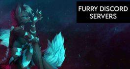 Описания топ-10 лучших русских и не только Discord servers для фанов Furry