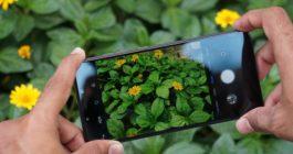 ТОП 9 лучших недорогих смартфонов Samsung с хорошей камерой