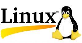 Как пошагово удалить Линукс Убунту и оставить Windows 10 на своем компьютере