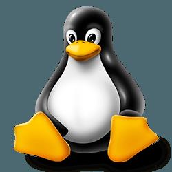 Как быстро установить Linux в Windows 10
