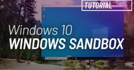 Как установить и запустить Песочницу и пользоваться ею в системе Windows 10