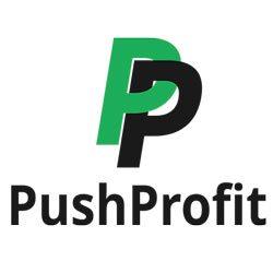 Пассивный заработок с Pushprofit + магазин подарков: двойная выгода для владельцев сайтов