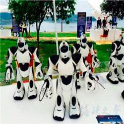 В Китае открылся парк с роботами