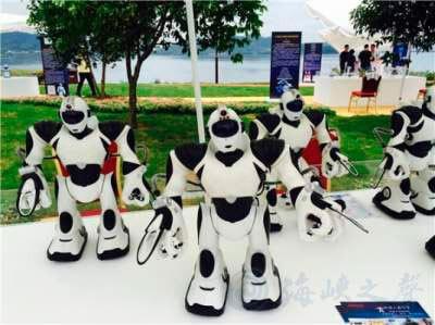 Компания китайских роботов