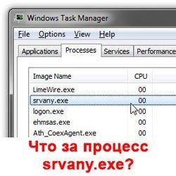 Что за процесс srvany.exe?