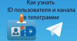Как в Телеграме можно узнать свой и не только ID, способы получения адреса