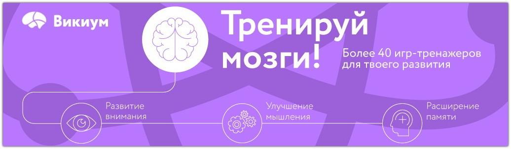 Развитие мозга по максимому
